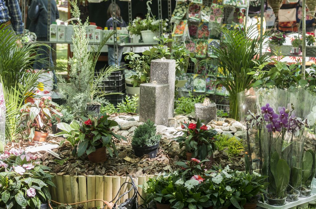 Dísznövény-kiállítás kilencedszer