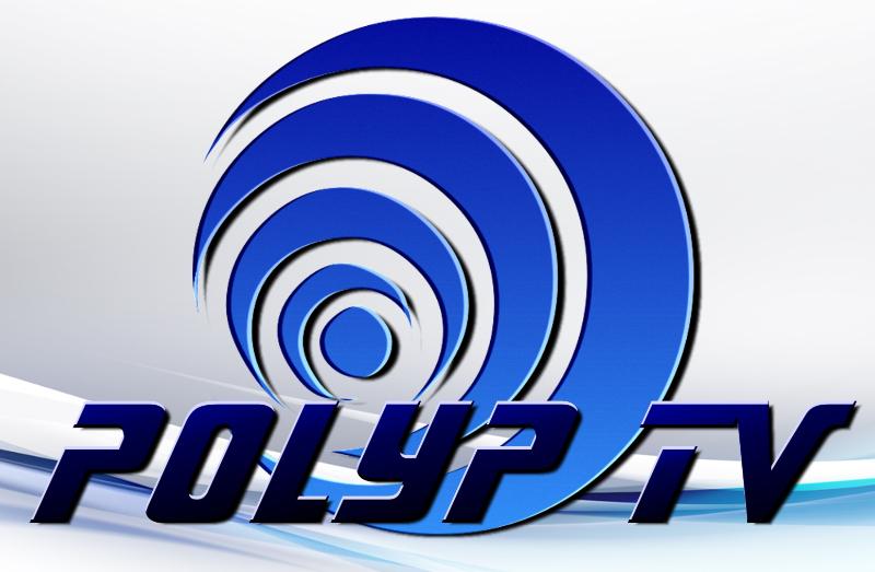 Megyei szórásban sugároz a Polyp Televízió