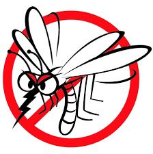 Szúnyogírtás Kézdivásárhelyen